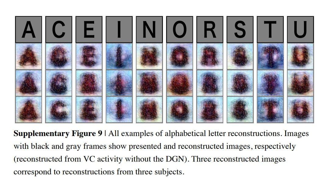 Inteligencia artificial para «decodificar» pensamientos en imágenes