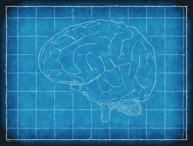 Investigadores logran reproducir la dinámica cerebral en laboratorio