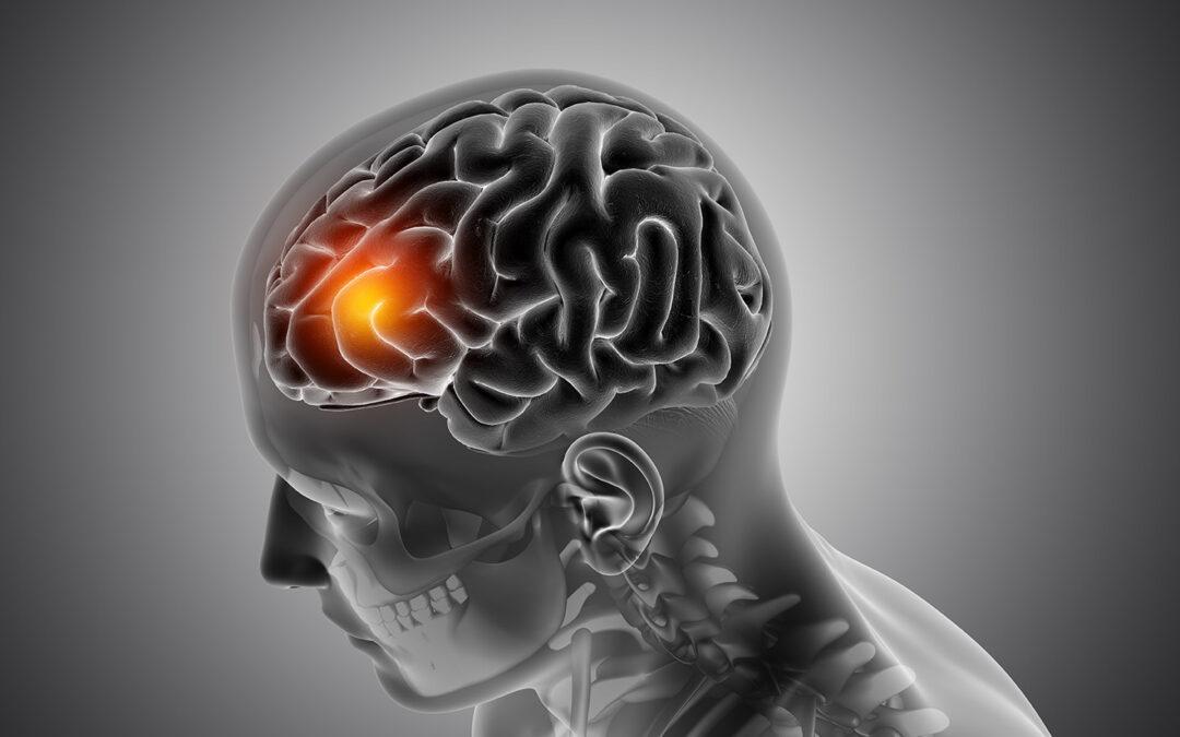 Ciertas ondas cerebrales desencadenan procesos físicos en el organismo